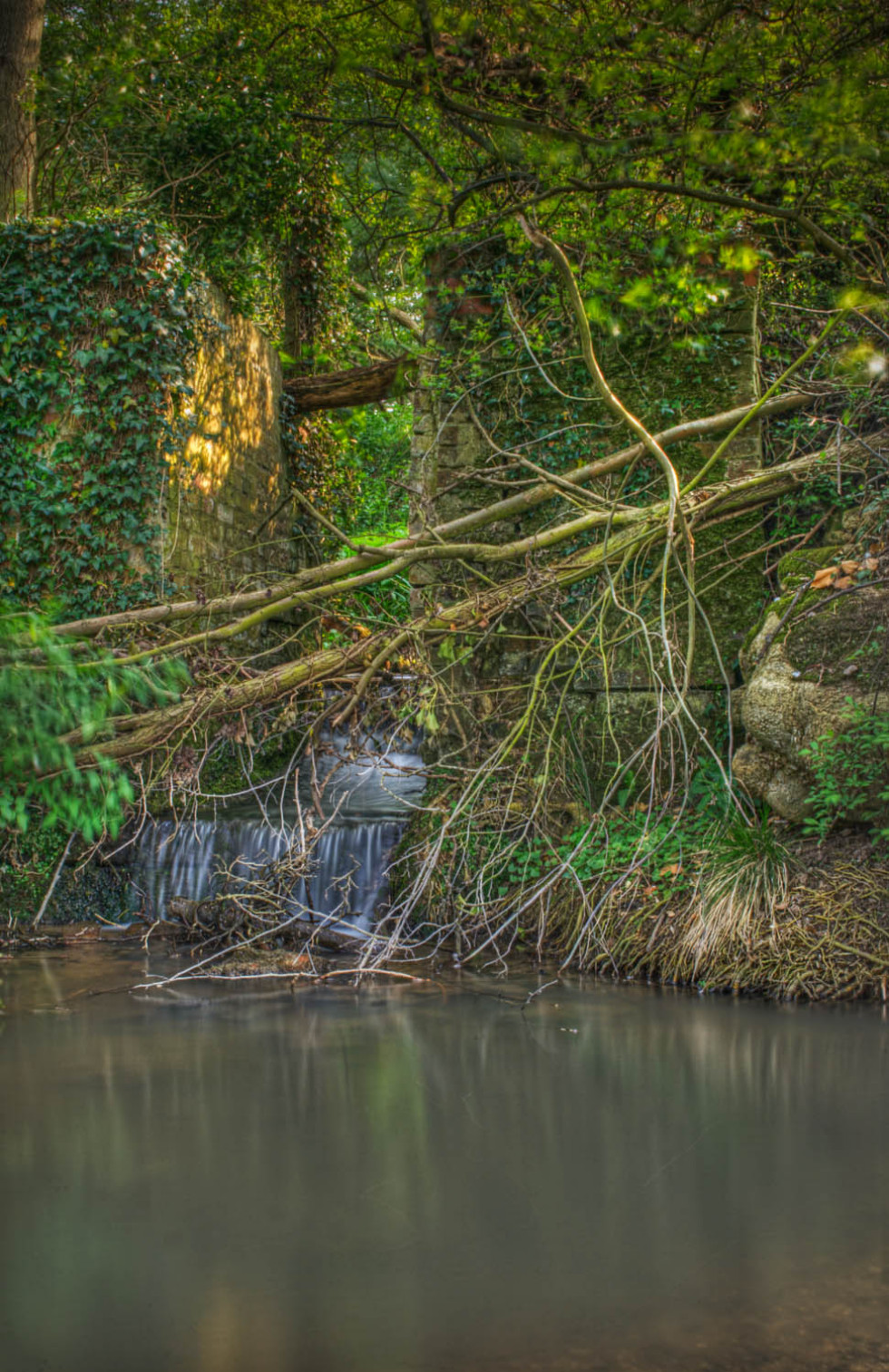 The stream that powered a water mill…