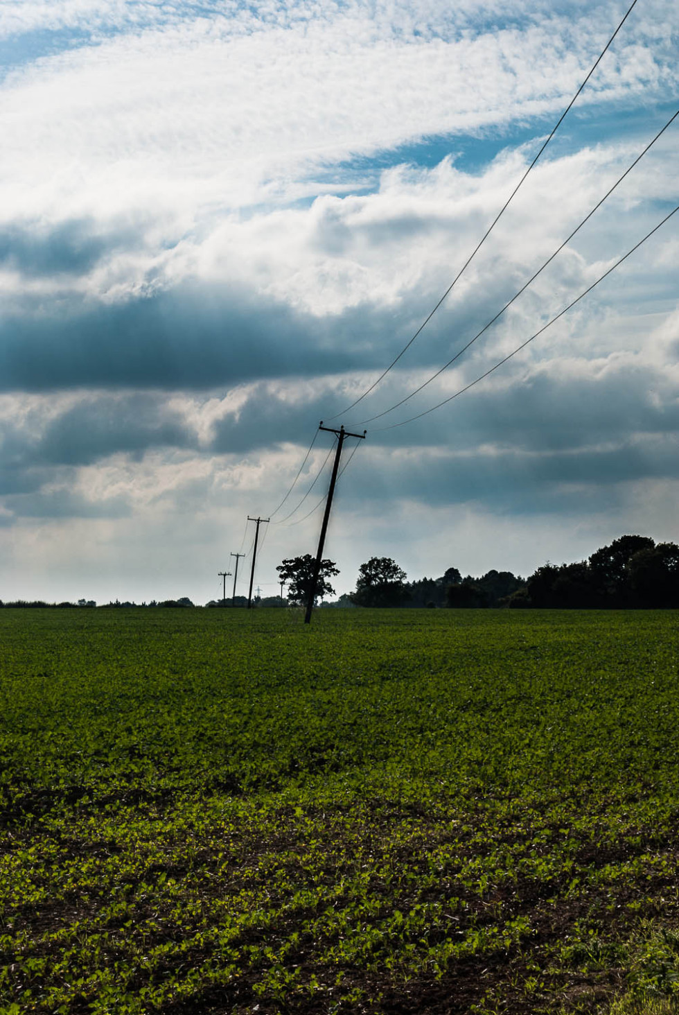 Rickling Power Lines