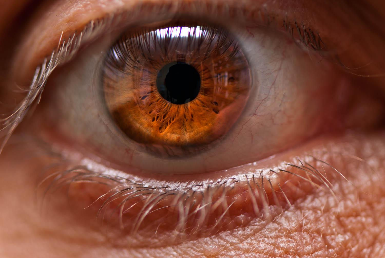 My right eye | iris | macro photography | Photography by ...