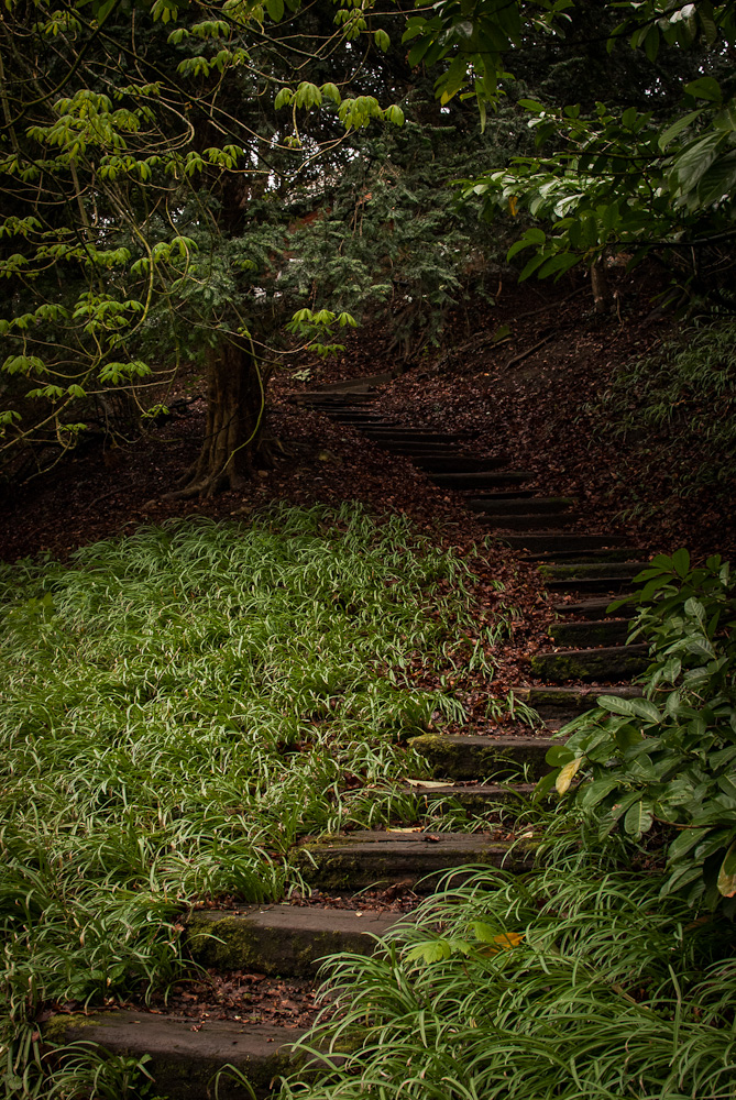 Part III of a series of shots showing different steps at Hedingham Castle