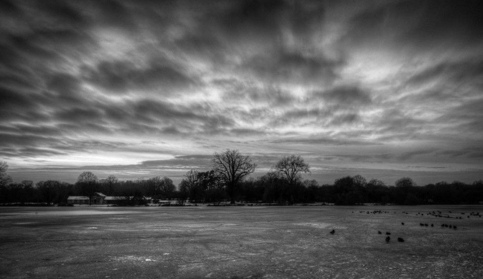 A Frozen Hatfield Forest Lake in Black and White