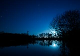 Moonrise on Hatfield Forest