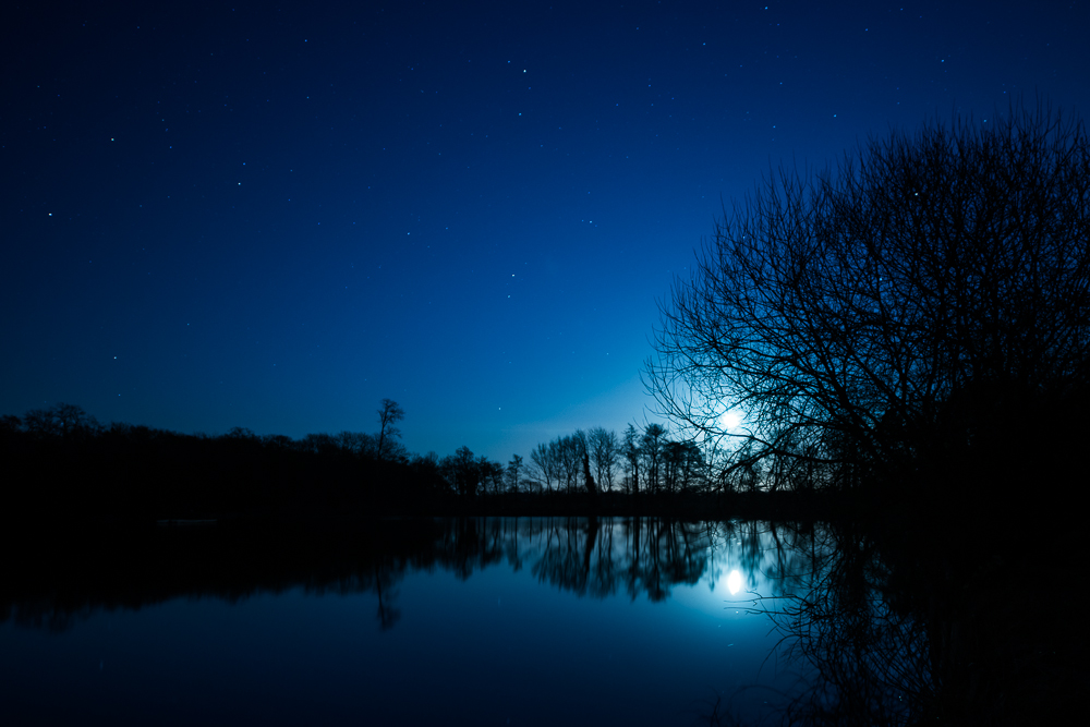 Moonlight_on_Hatfield_Forest_Lake