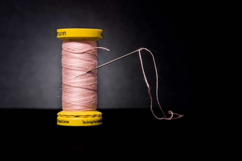019/365v2 Needle and Thread