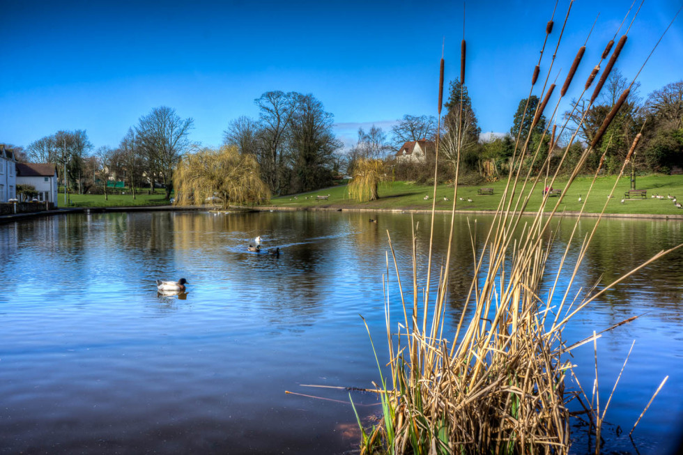Doctors Pond, Great Dunmow, Essex