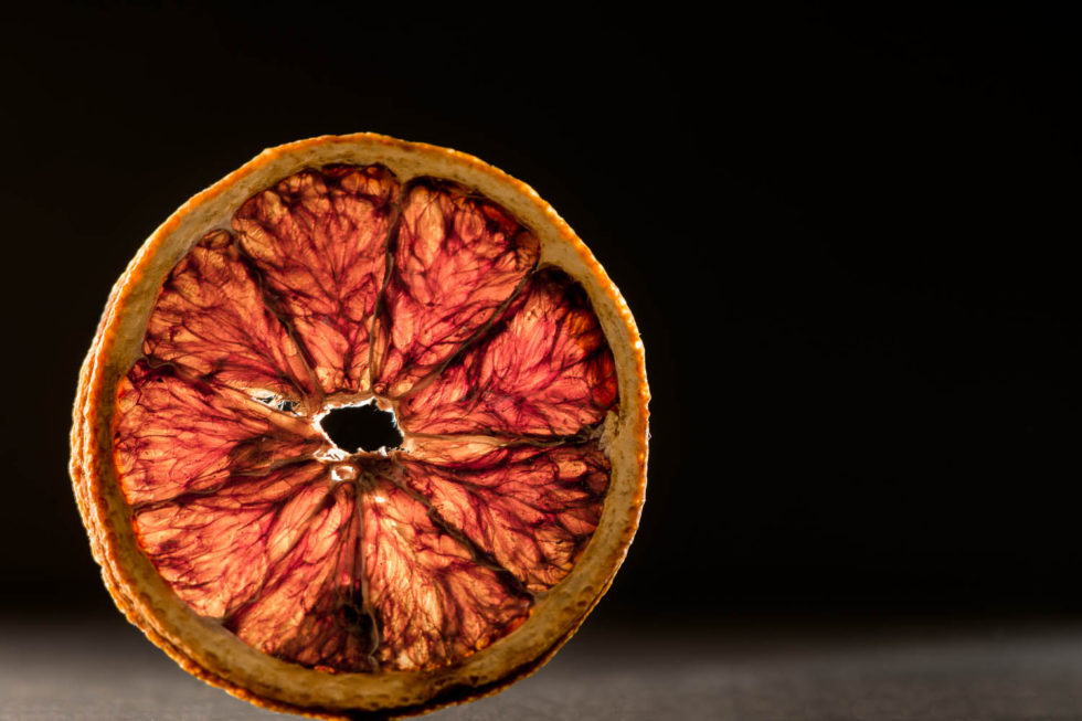 090/365v2 Dried Orange Slice