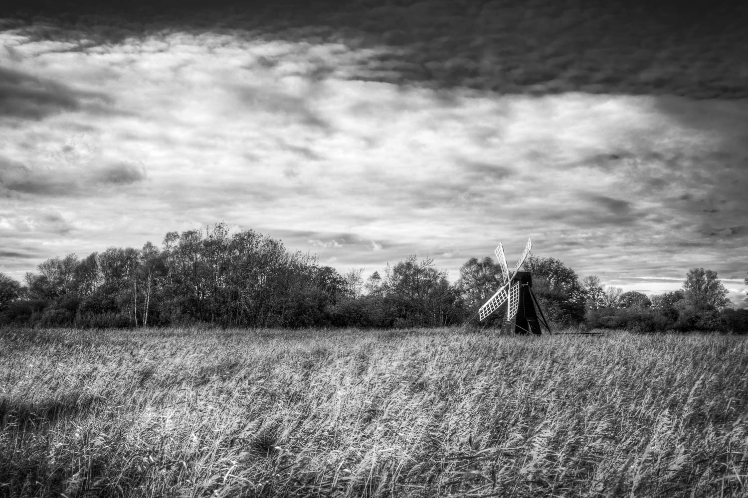 Wind Pump at Wicken Fen B&W