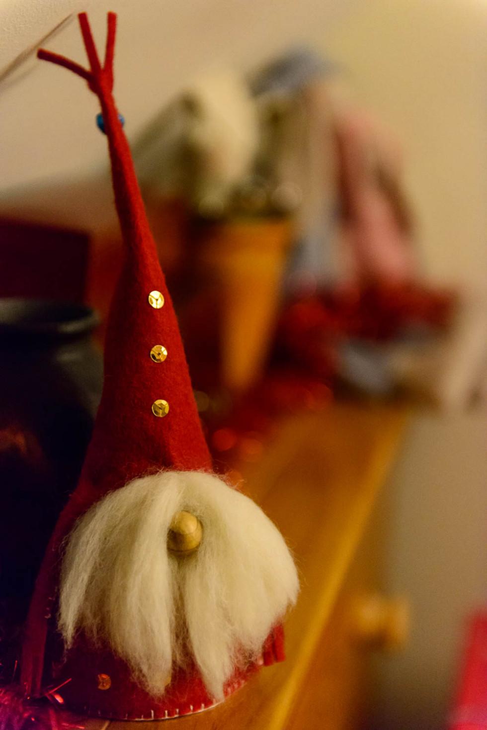 352/365v2 Christmas Tomte