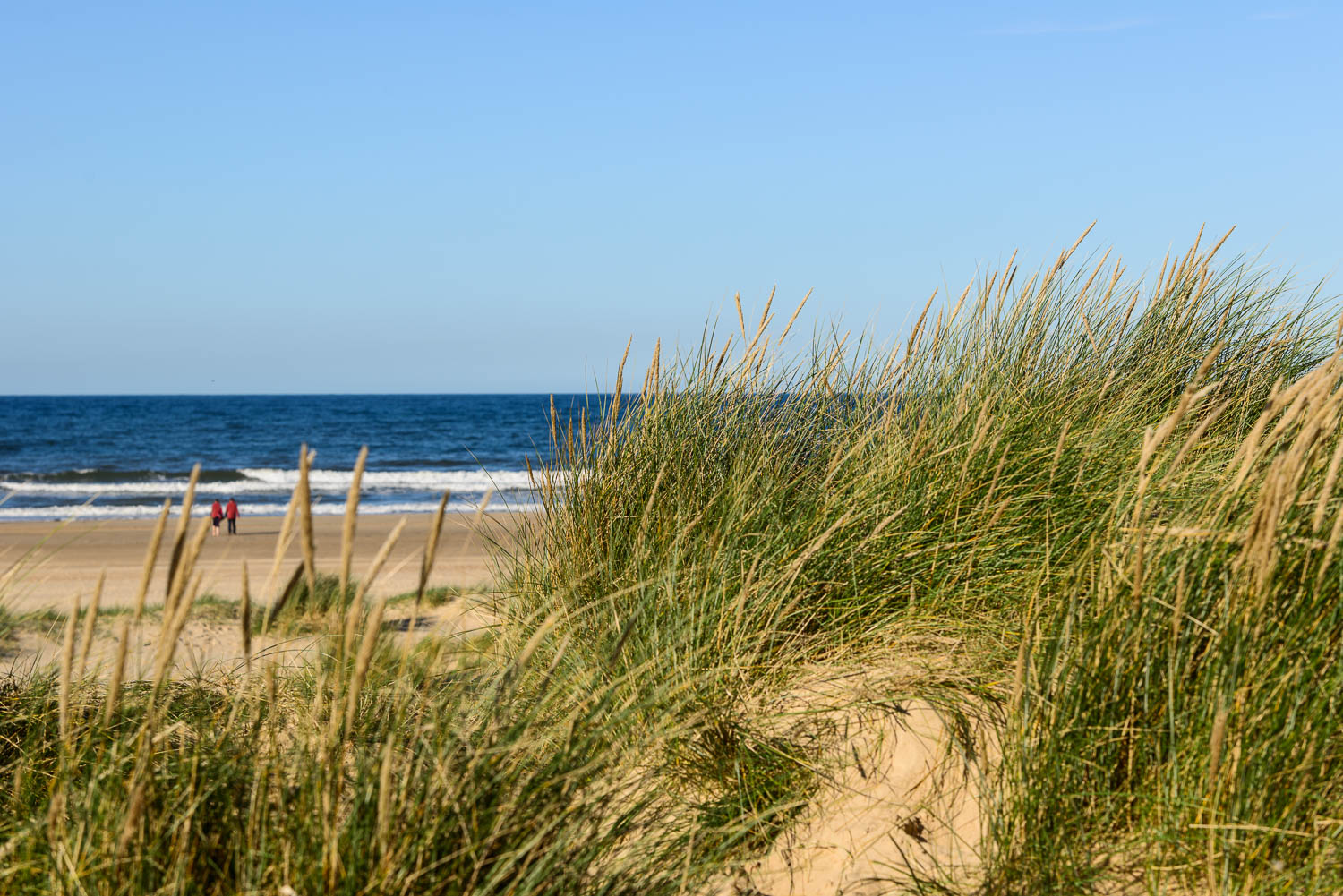 Holkham Beach, a couple from the dunes, Wells-next-the-Sea, Norfolk