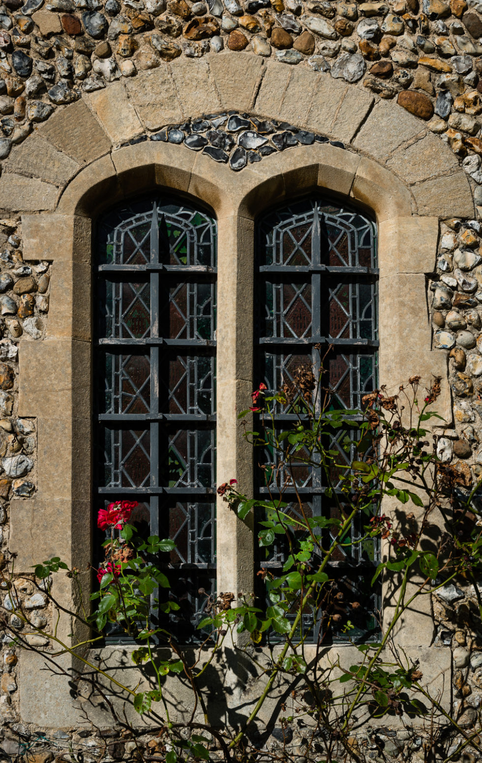 11/365v3 Windows and Roses
