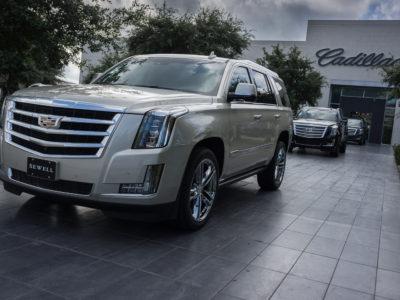 45/365v3 A Texan Cadillac