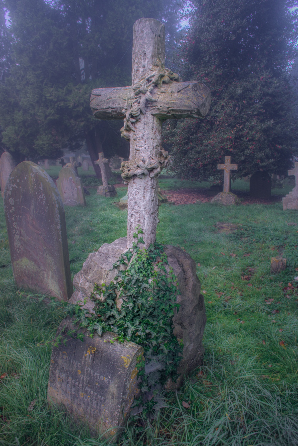 Gravestone with Ivy