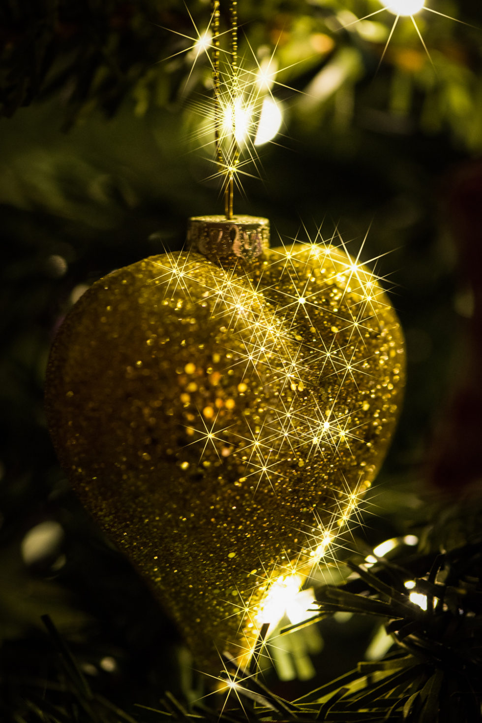 109/365v3 – Christmas Bauble