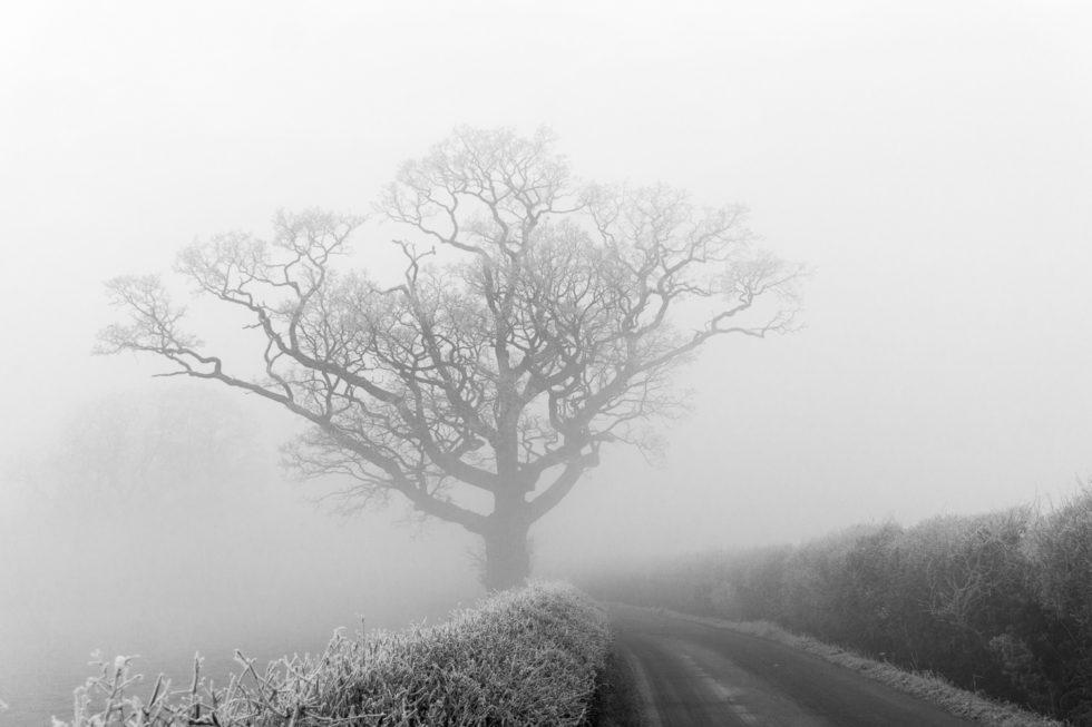 145-365v3 – Freezing Fog