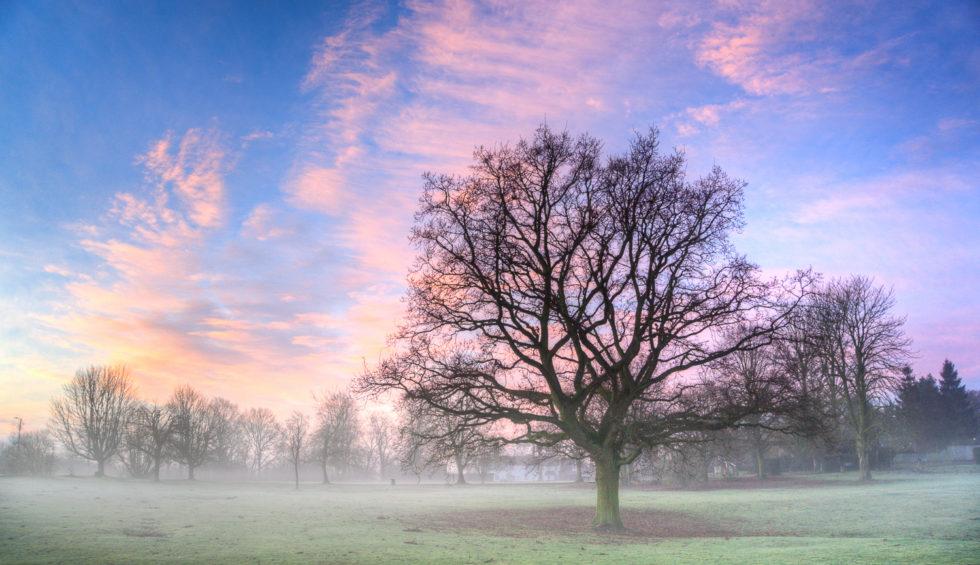 159-365v3 – As The Mist Rises