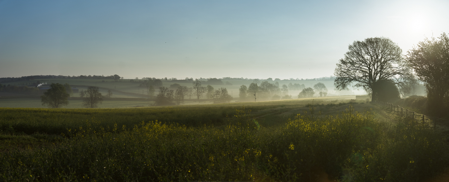Misty Morning over the Fields