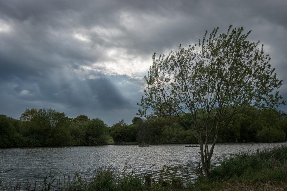 243/365v3 – Hatfield Forest Lake.