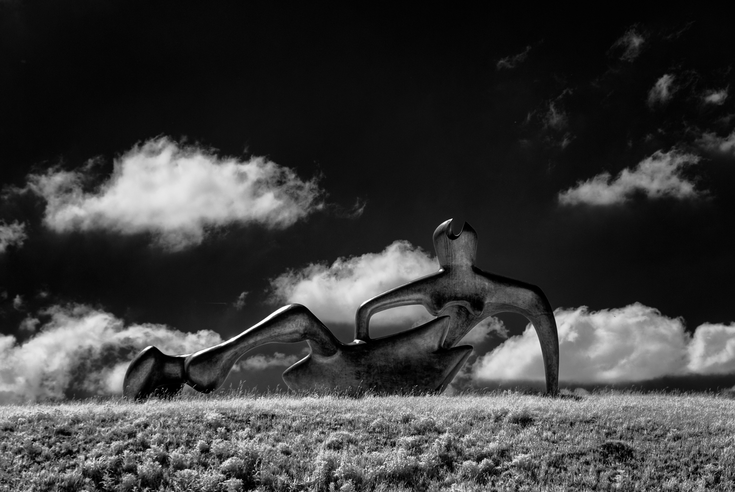 Large Reclining Figure - infra-red