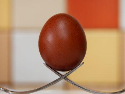 Eggtastic