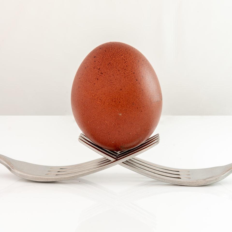 Forking Egg