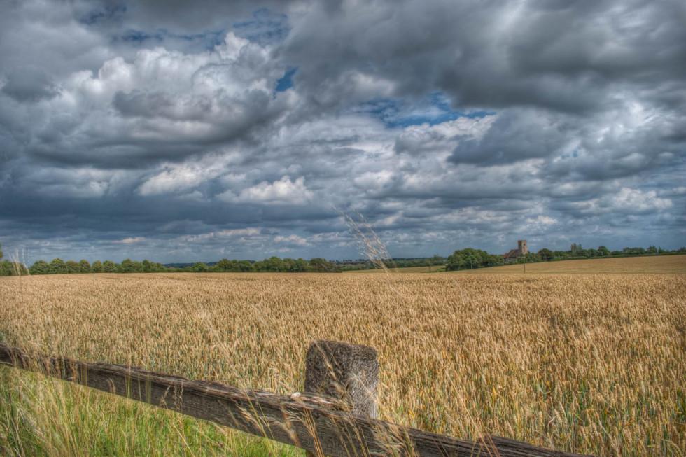 Beauchamp Roding Church in fields