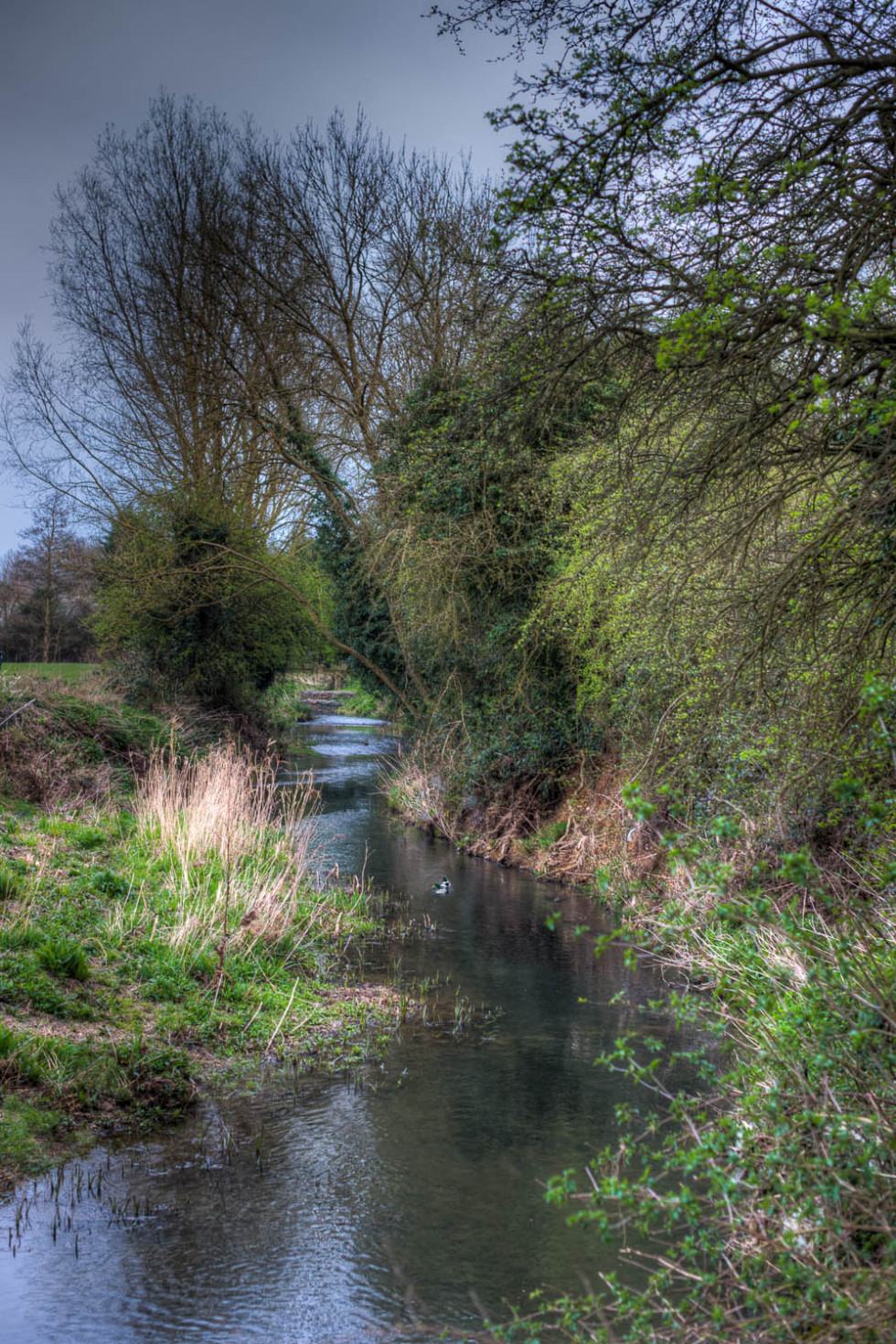 The River Stort Dunmow