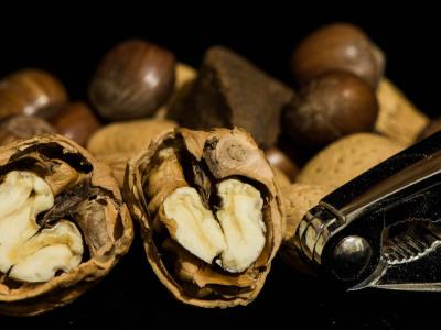 325/365v2 Nuts!