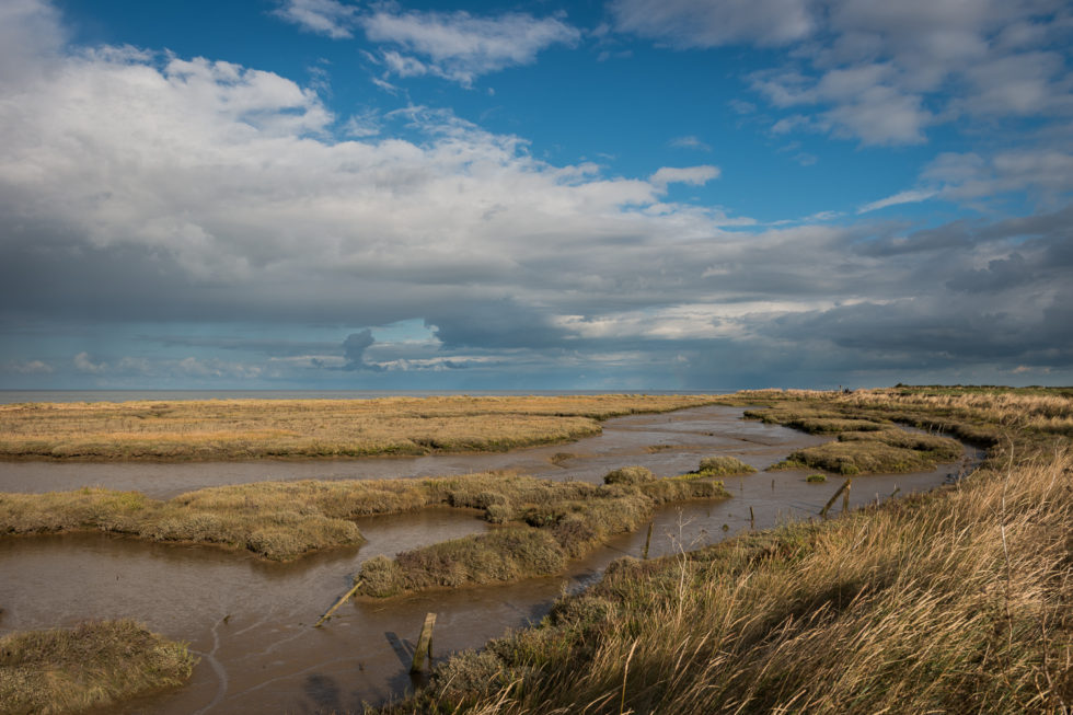 Wlaton on the Naze – Photography by Mark Seton