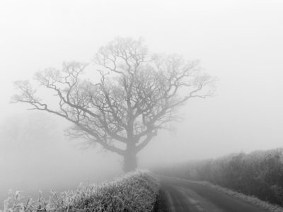 145/365v3 – Freezing Fog