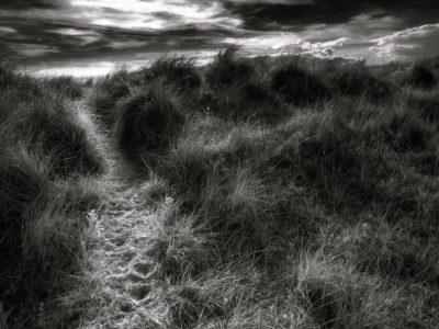 273/365v3 – Path Through The Dunes